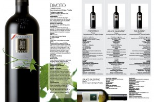 brochure-apollonio6